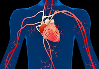 O que é Pressão Arterial?