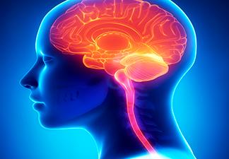 benéfico ao cérebro