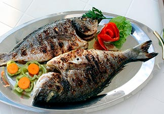 alimentação peixe