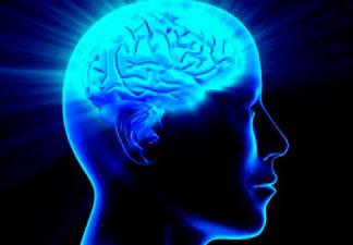 cérebro mais potente