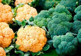 o que é brócolis