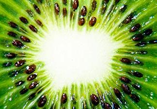 o que é kiwi