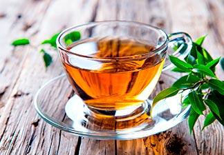 conclusão chá de hortelã