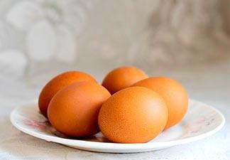 gordura qualidade ovo