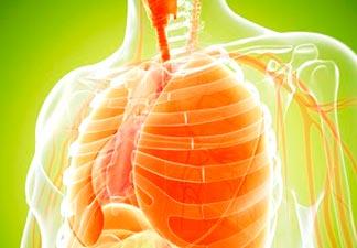 pulmões fortes