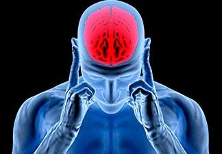 cérebro potente