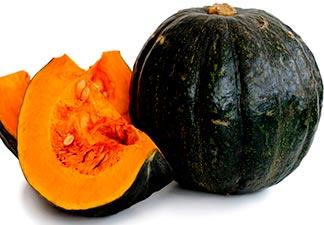 fruto da aboboeira