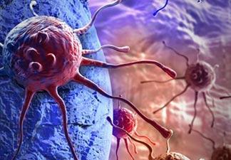 células malignas