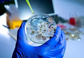 microbiologistas