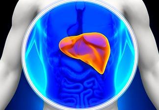 Protege o fígado