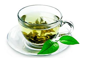 chá de guaçatonga