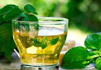 chá de ora pro nobis