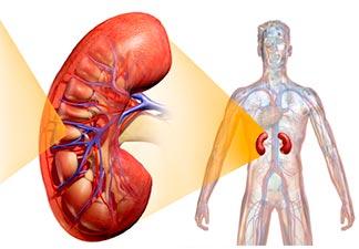 o que é nefropatia diabética