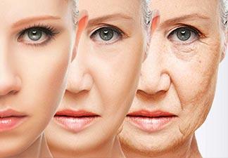 envelhecimento biológico