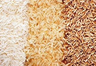 o que é arroz